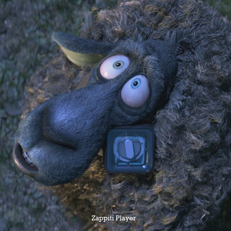 זפיטי כבש