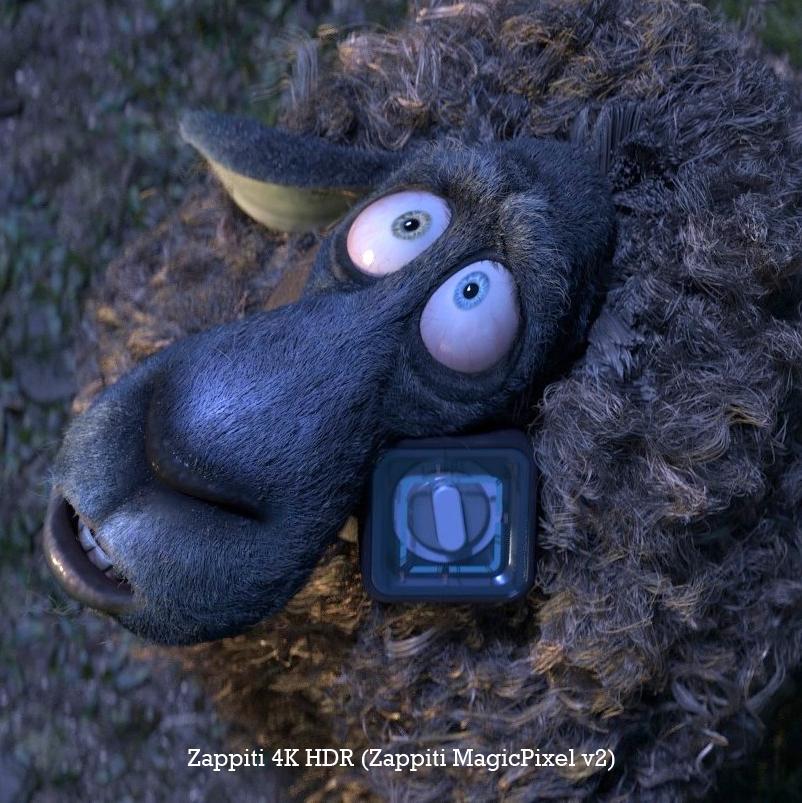 זפיטי כבש MAGIC PIXEL V2