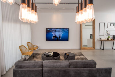 OLED screen in a designed living room