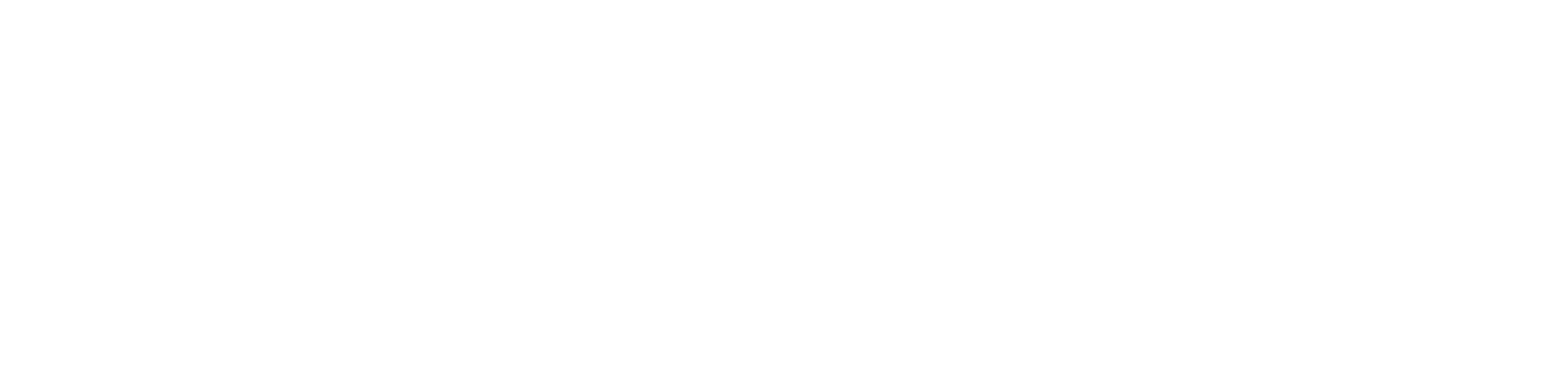 benchmarkmedia Logo